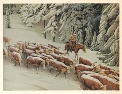 Cattle Drive in Winter