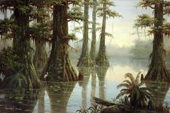 Florida Everglades, Big Cypress National Preserve