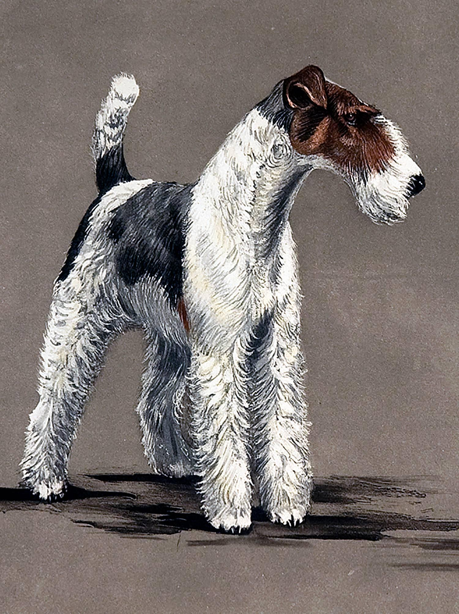 Leon Danchin - Two Wire Fox Terriers, Print For Sale at 1stdibs