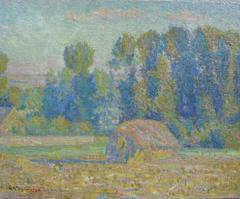 Haystack in Summer Meadow