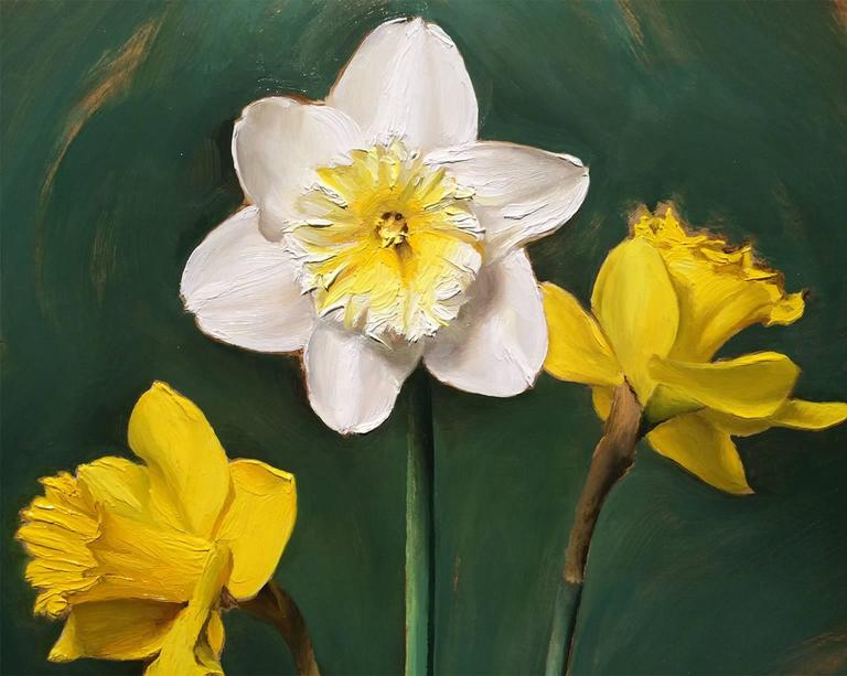 Daffodils - Black Still-Life Painting by Joseph Q. Daily