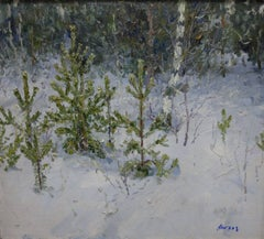 Young fir trees in the forest - Oil, cm. 70 x 62, 1996