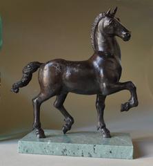 Equus Speculator