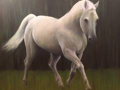 White Horse in a Green Field
