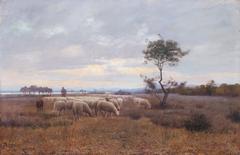 A Shepherd at dusk