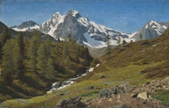 An Alpine torrent in the spring