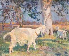 A pair of goats