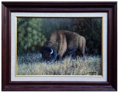 Black Hills Buffalo by Ron Holyfield