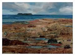Rocky Beach, Maine Landscape