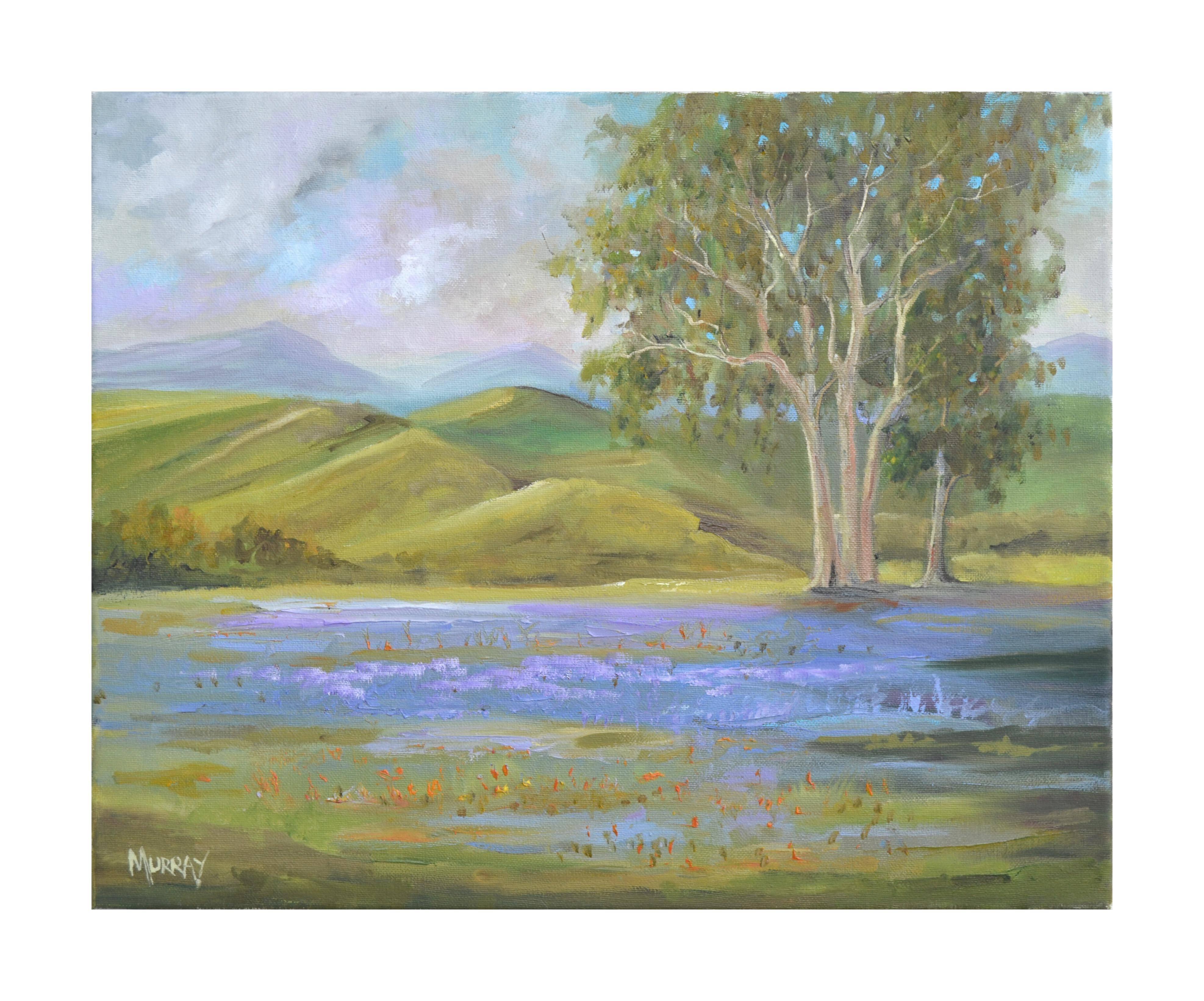 California Lupine Fields