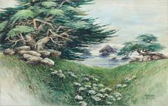 Shore Carmel Cypress
