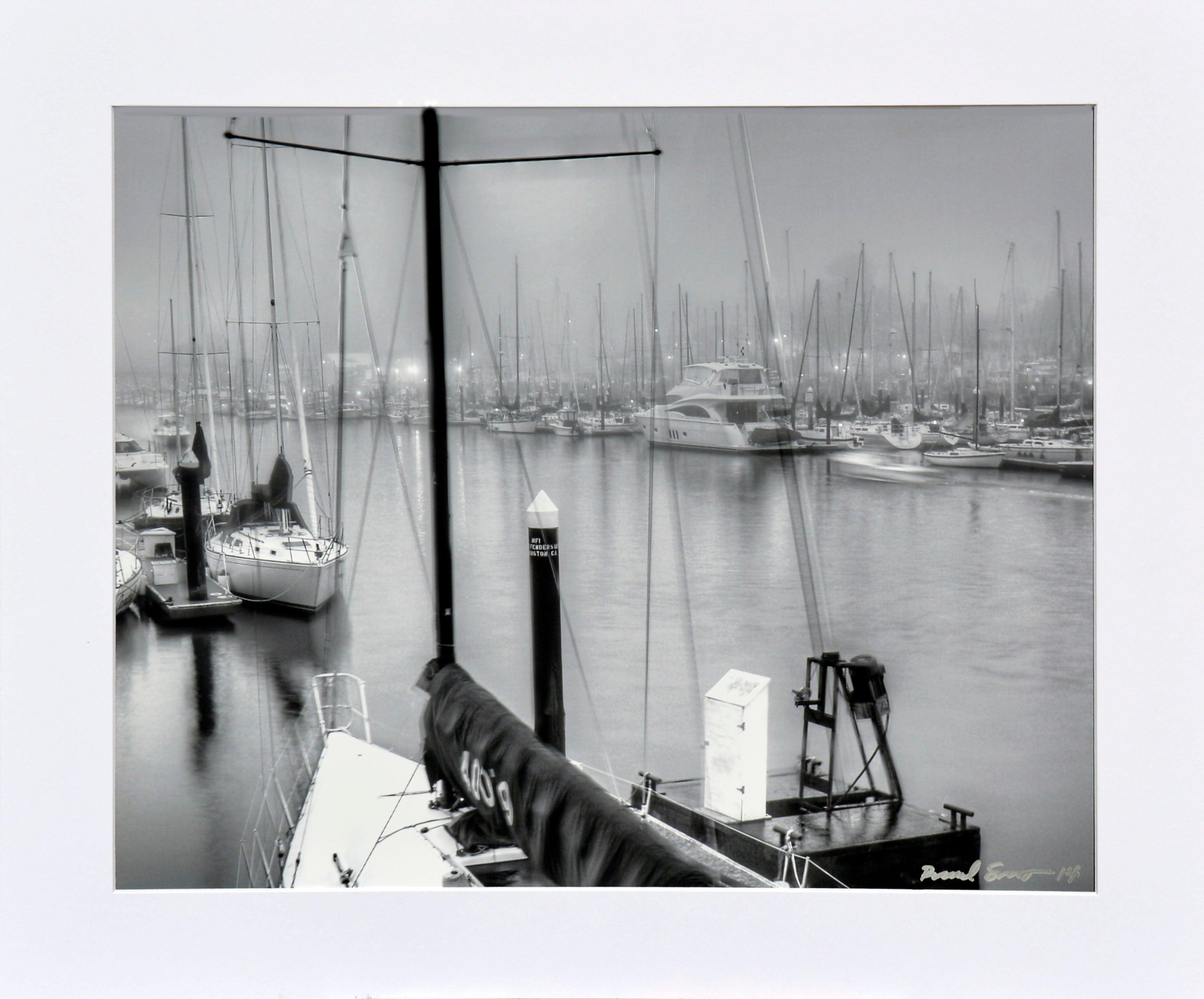 Foggy Harbor, Santa Cruz