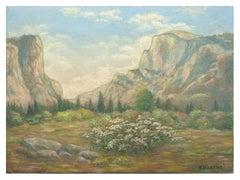 Between Half Dome and El Capitan