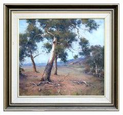 Gum Trees Australian Landscape