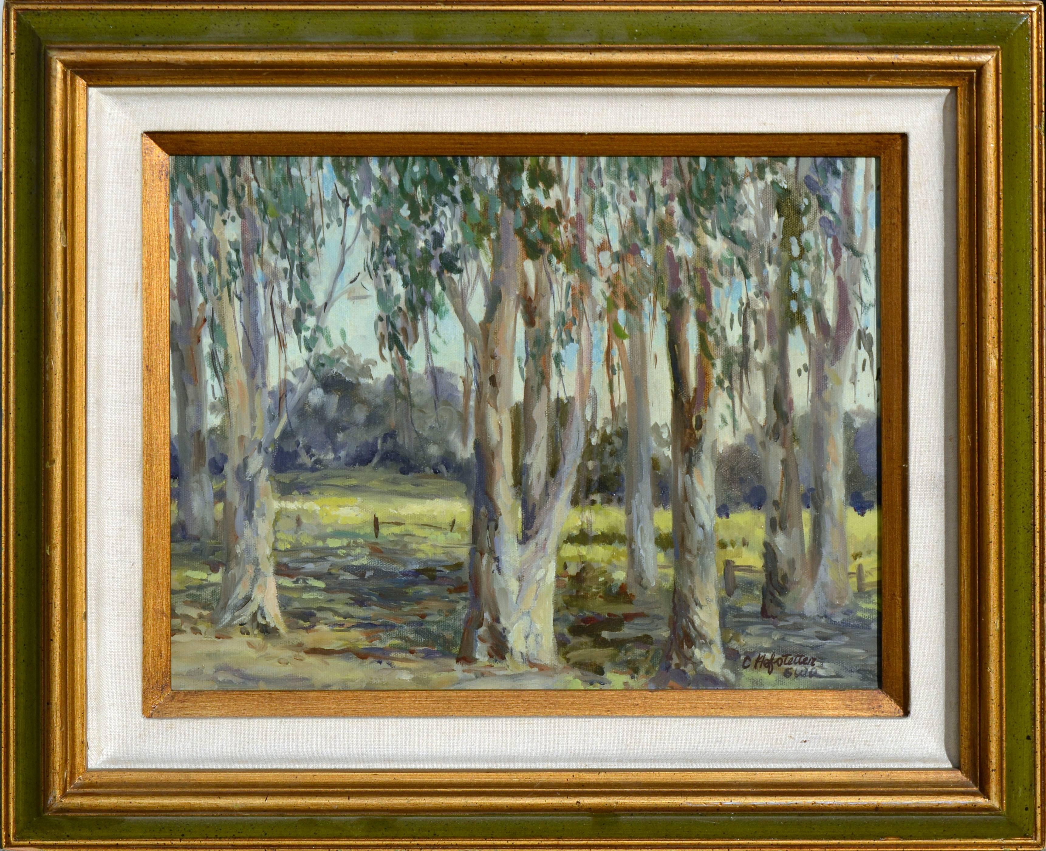 Eucalyptus Grove Landscape