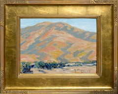 South of San Luis Obispo, California Landscape