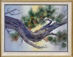 Carmel Pine Bough