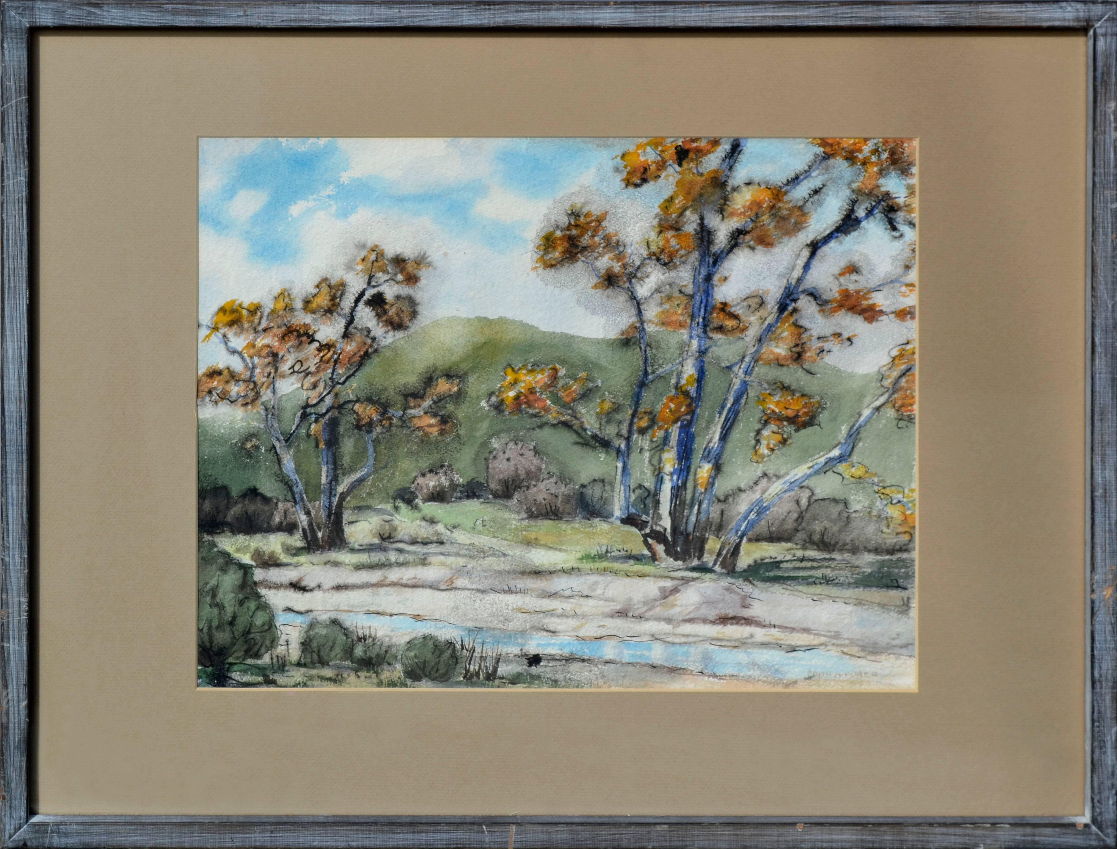 Mid Century Southern California Landscape