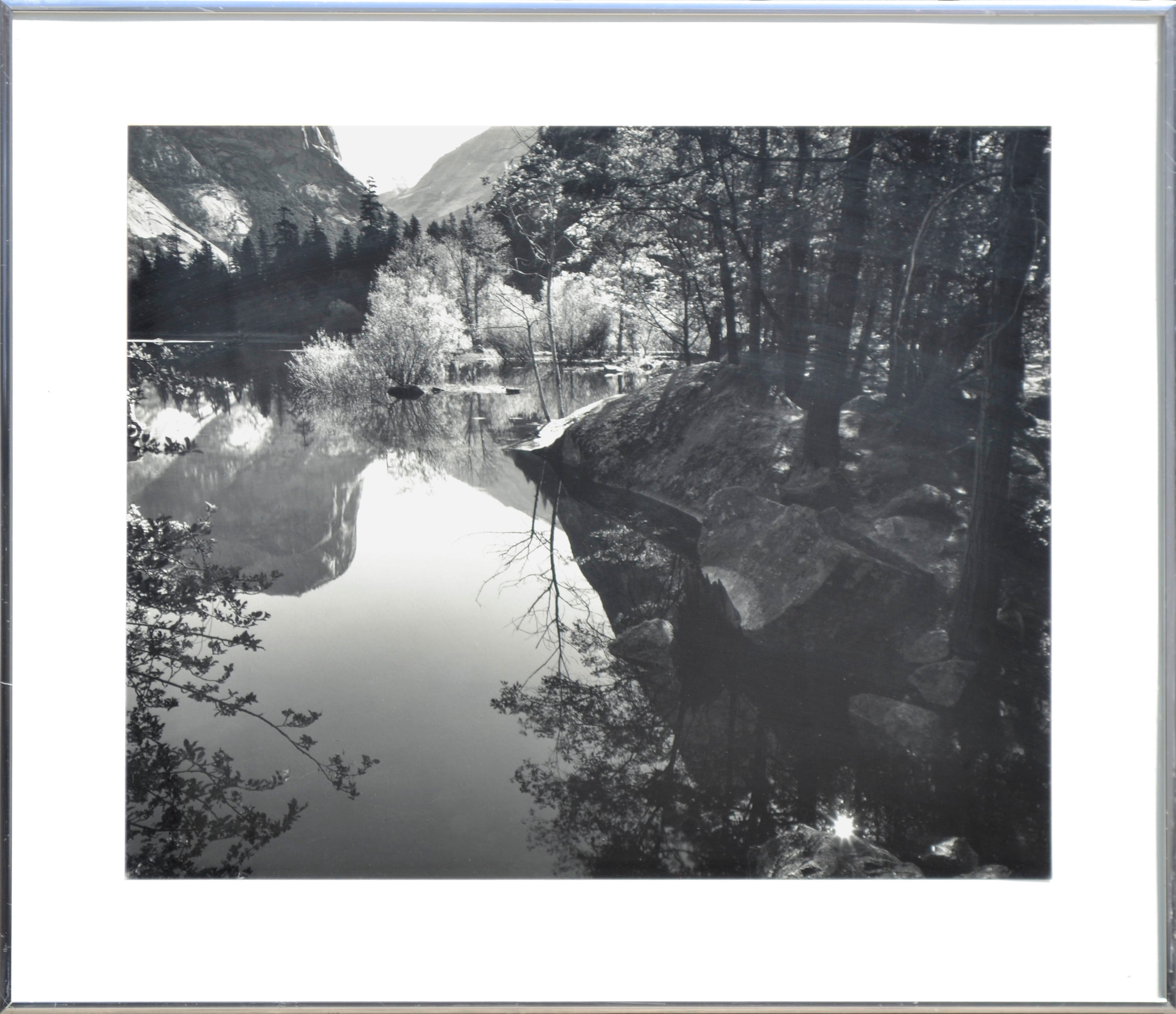 Robert werling black and white reflections