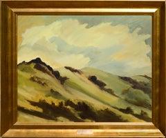 Marin Hills California Landscape by Noel Howard