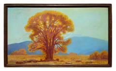 California Oak, 1935
