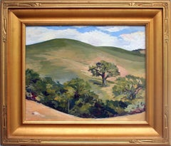 Carmel Valley Ranch Hills Landscape