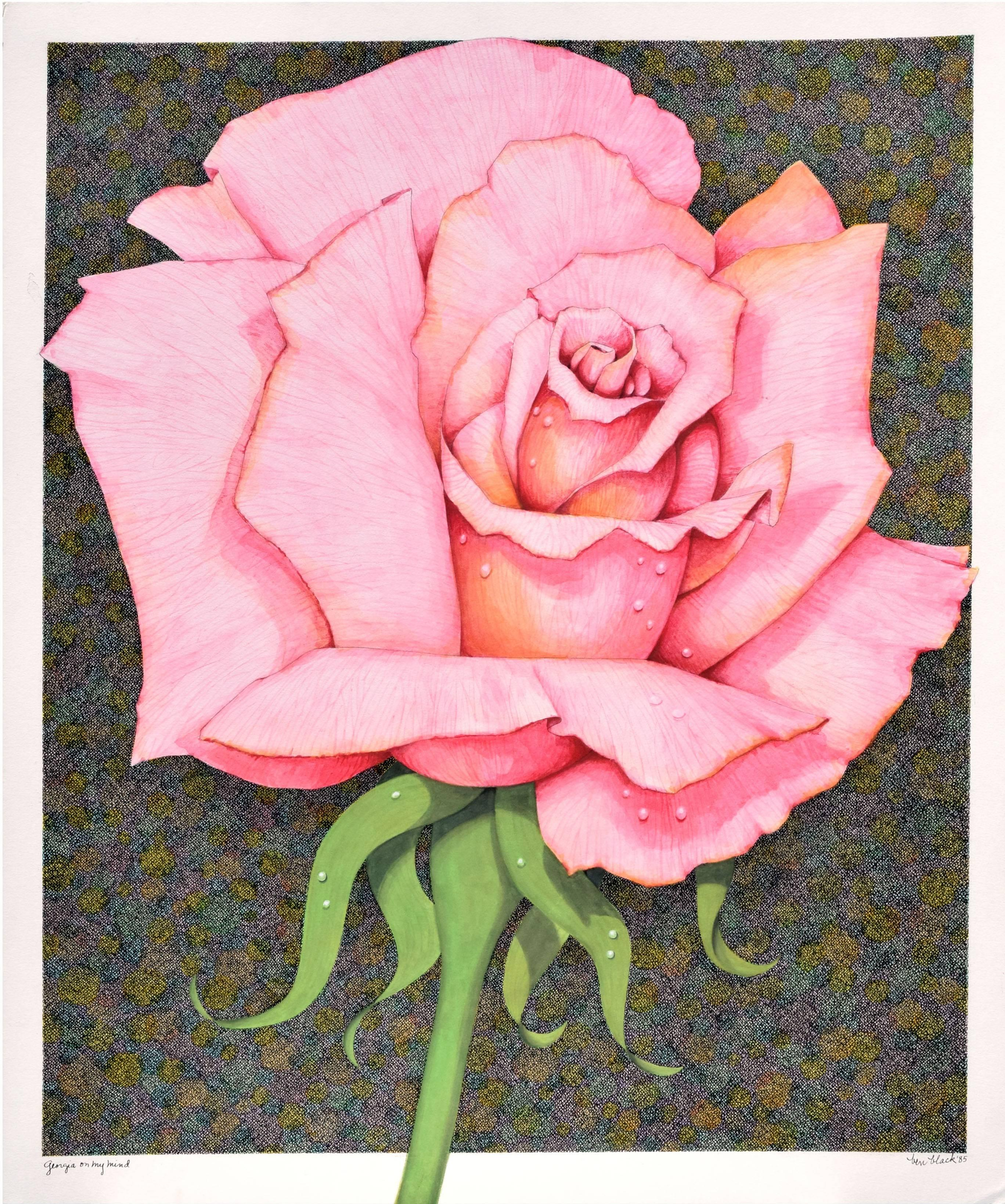 """""""Georgia On My Mind"""" - Pink Rose Illustration"""