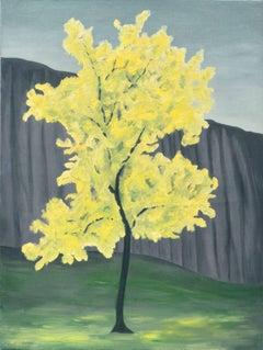 Blooming Golden Primavera Tree