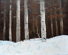 Colorado Birches in the Snow - Schissler