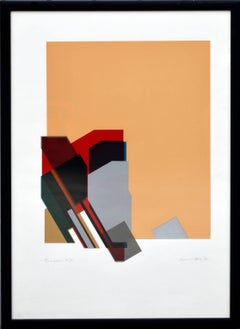 """""""Tarantella"""" - Geometric Abstract Screen Print with Peach, Red, and Black"""