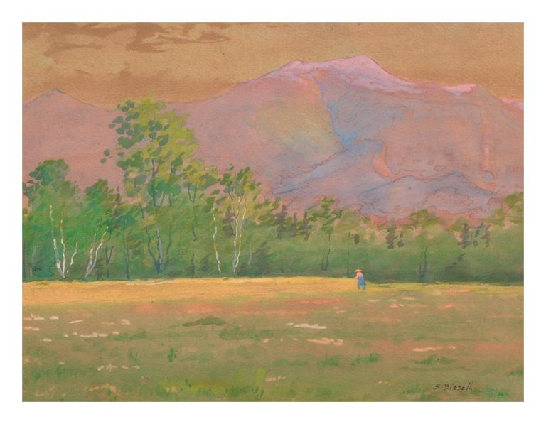 Late 19th Century Adirondack Mountains, New York Landscape - Painting by Susan Field Bissell