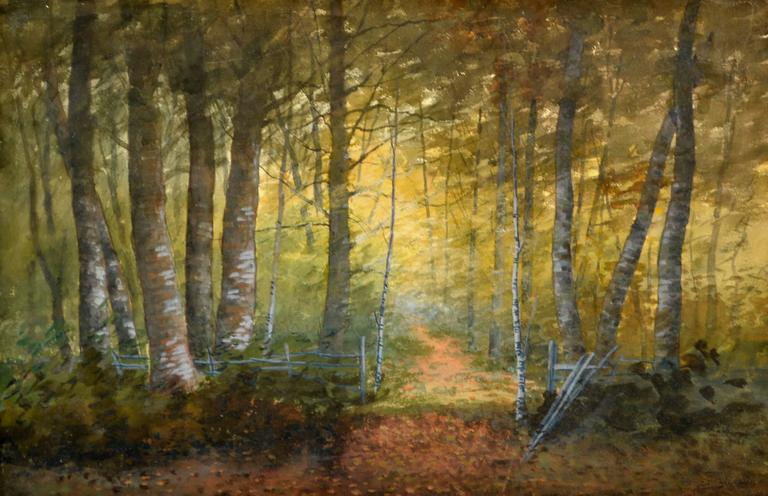 Turn of Century Birch Forest Glow Suffolk County, New York Landscape - Painting by Susan Field Bissell