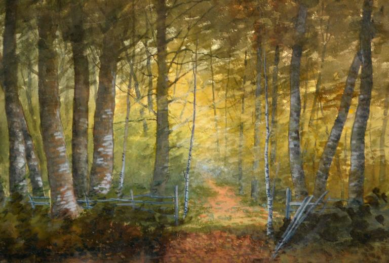 Turn of Century Birch Forest Glow Suffolk County, New York Landscape - American Impressionist Painting by Susan Field Bissell