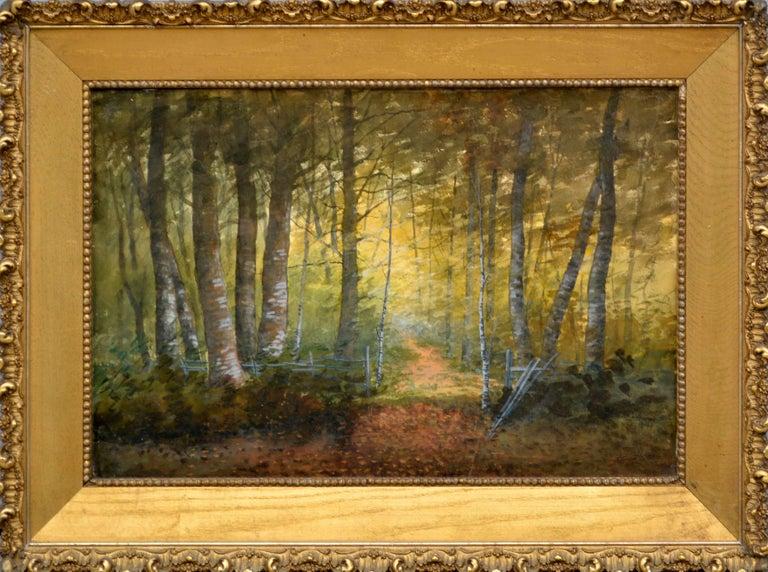 Susan Field Bissell Landscape Painting - Turn of Century Birch Forest Glow Suffolk County, New York Landscape