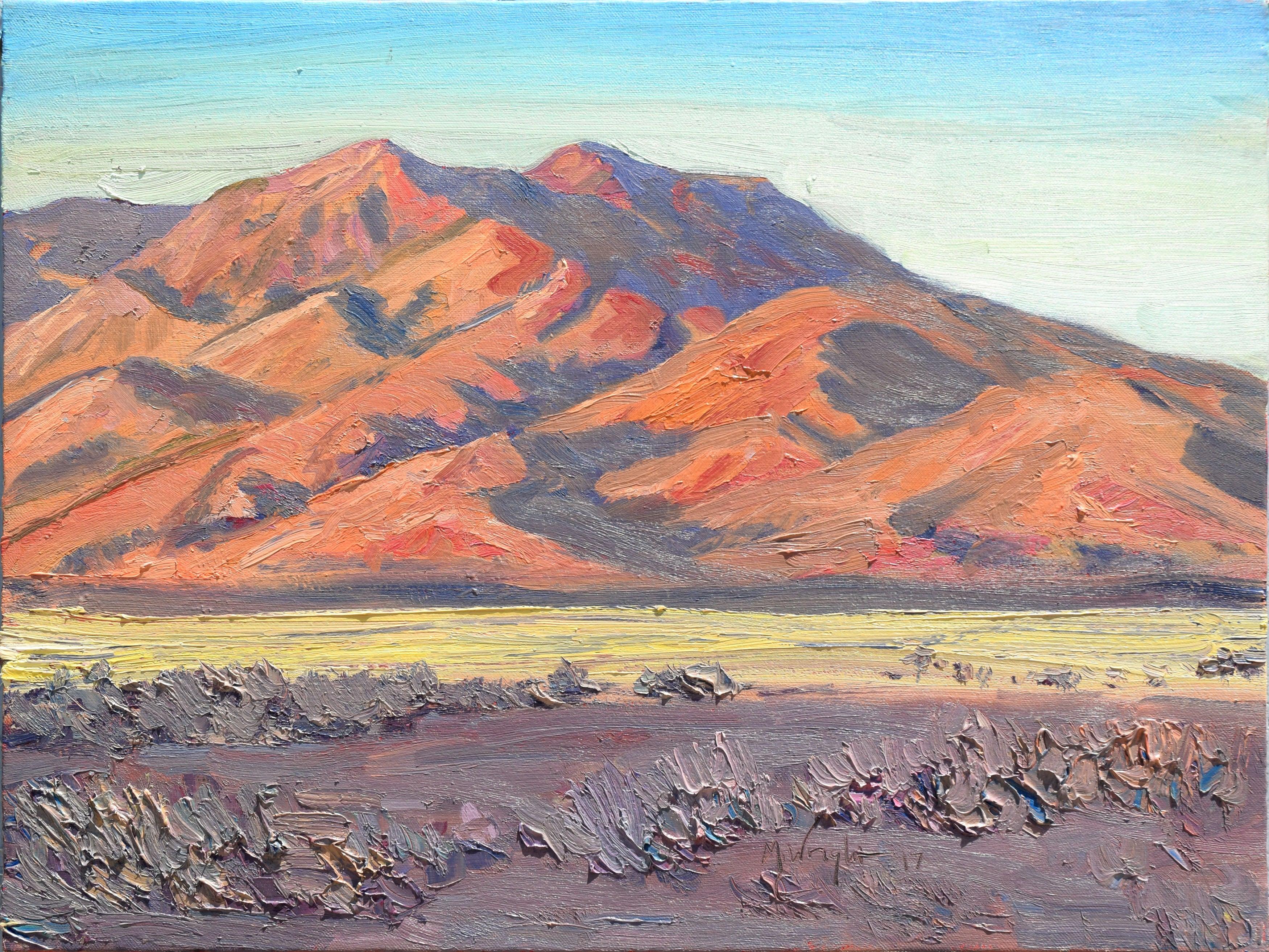 Desert Foothills Landscape