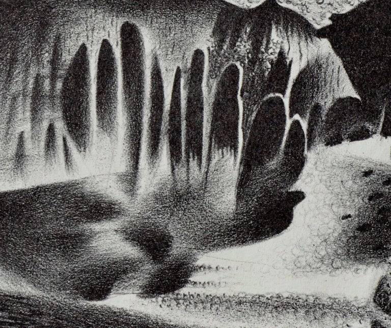 Mid Century Modern Breadfruit Abstract  - Gray Abstract Print by Raymond Edwin Brose