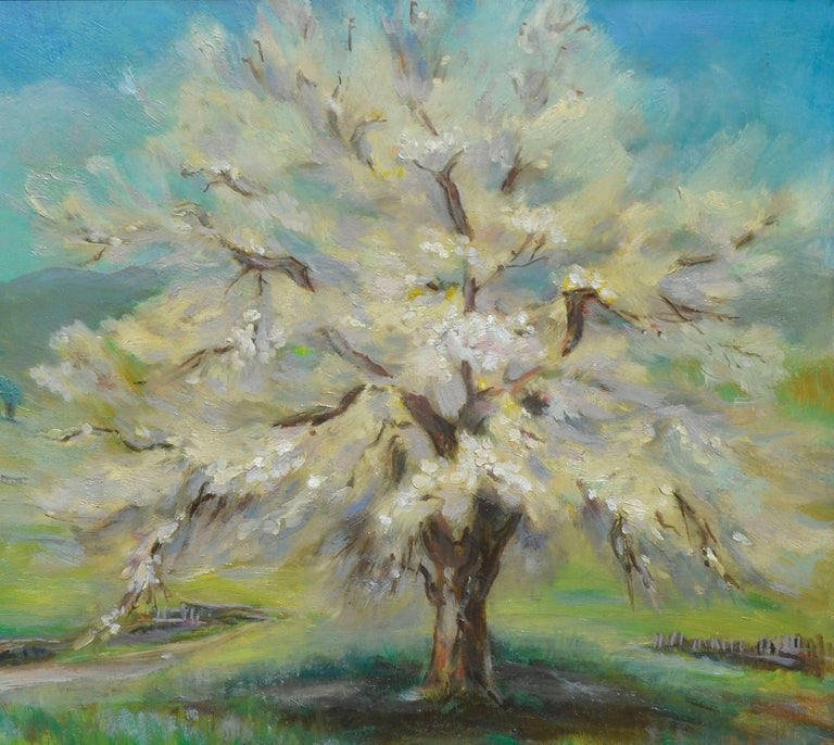 Apricot Tree, Spring Blossoms - American Impressionist Painting by Lucile Herbert