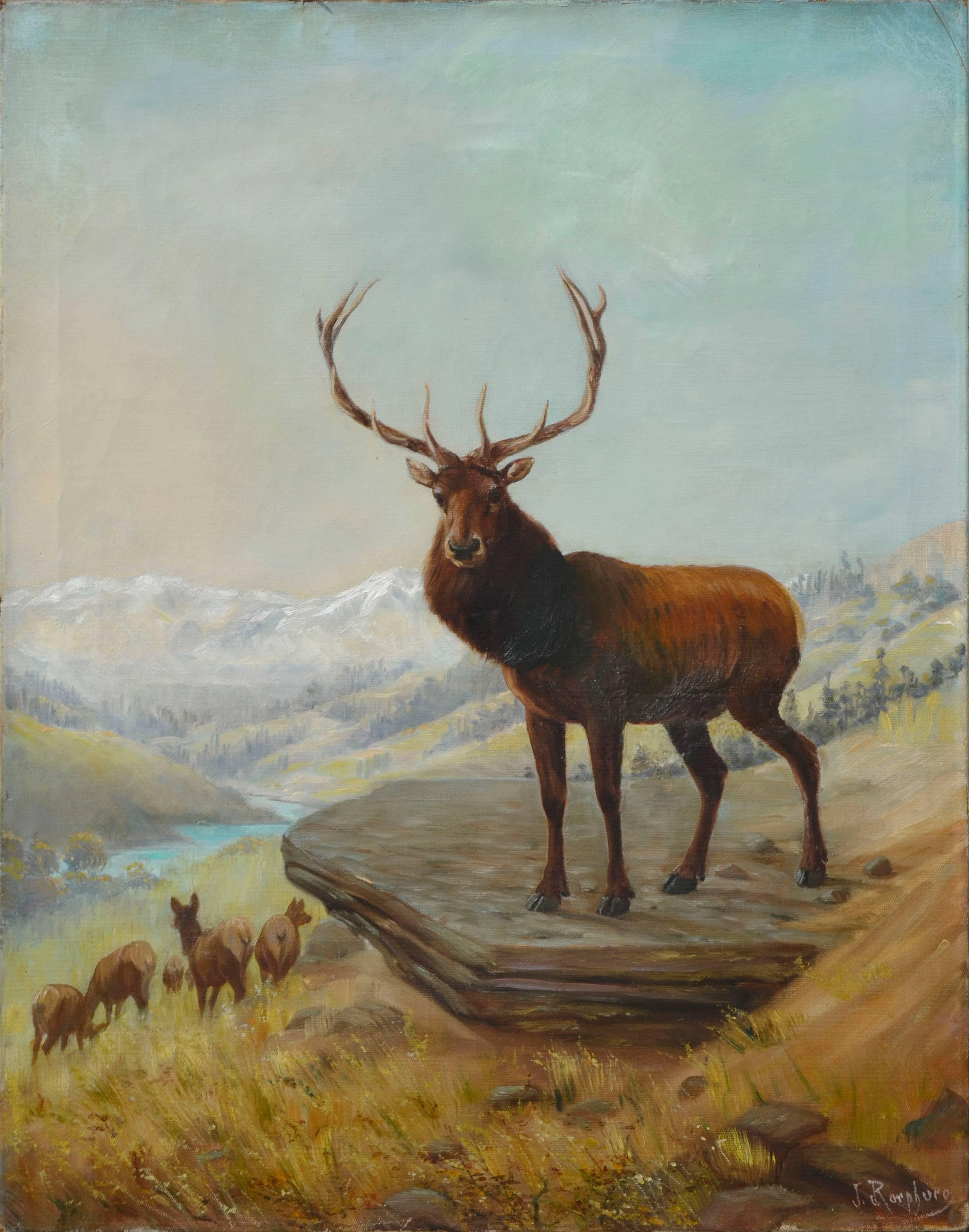 Stag in the Rockies, Mountain Landscape