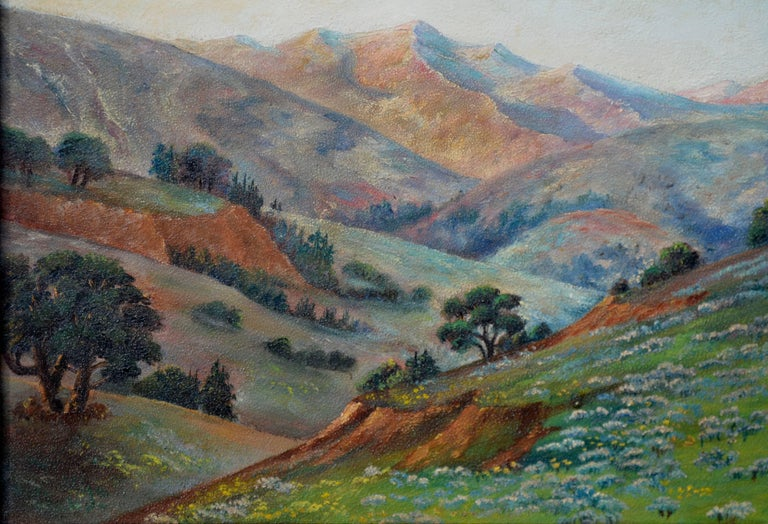 California Meadow and Mountains Landscape  4