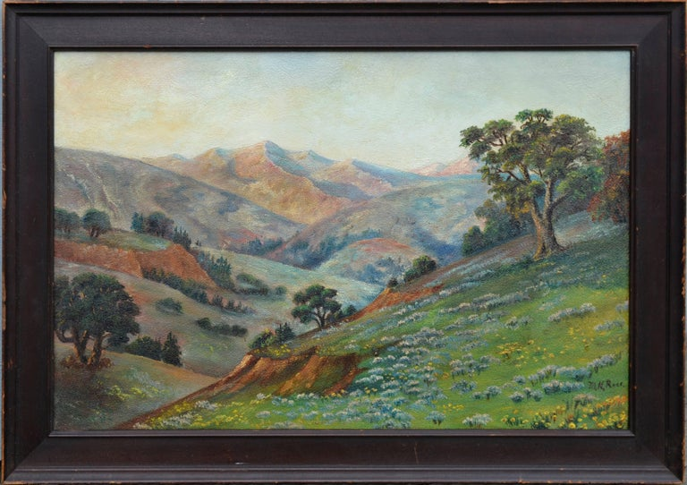 California Meadow and Mountains Landscape  1