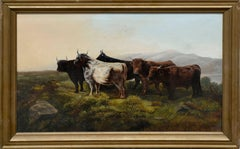 Highland Cattle in Pasture by George Bates