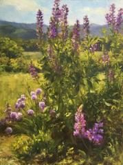 Sunshine and Lupine