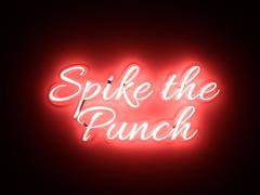 Spike the Punch
