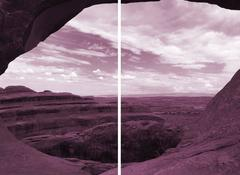 Kiki Gaffney - Magenta Landscape #1