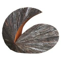 Organic Swirl Shaped Wooden Sculpture