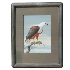 Photorealist Eagle Painting