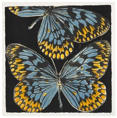 Butterflies, Donald Sultan