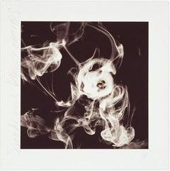 Smoke Rings (Nov. 12, 2001), Donald Sultan