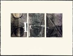 Voice 2, Jasper Johns