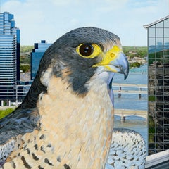 Peregrine City - Photorealist Painting of a Peregrine Falcon in an Urban Setting